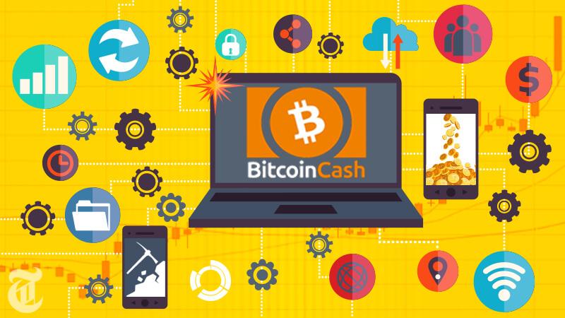 ビットコインキャッシュとは何か?将来性と今後価格は上がるのか?