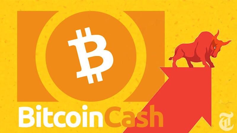 ビットコインキャッシュ(BCH)に注目が集まる理由と価格予測