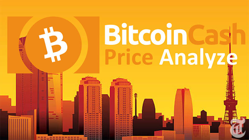 ビットコインキャッシュ(BCH)今後4年間の相場・価格予測