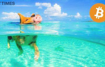 カリブ海諸国が仮想通貨決済を導入?|ビットコインリゾート