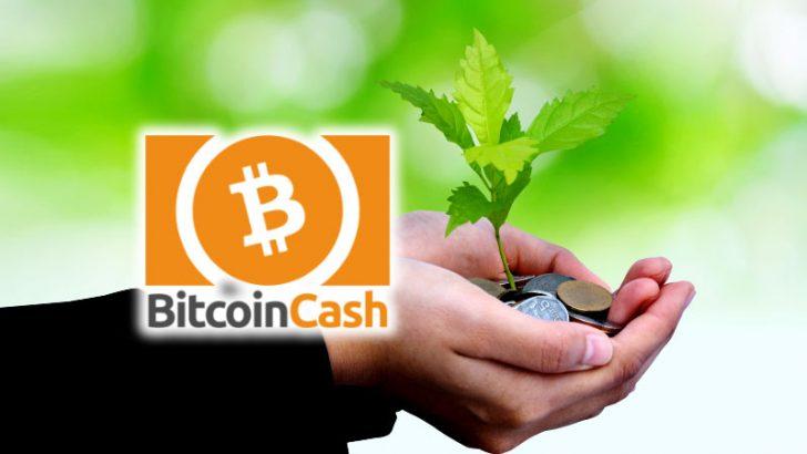 ビットコインキャッシュで簡単に寄付を募る|Akari-Pay