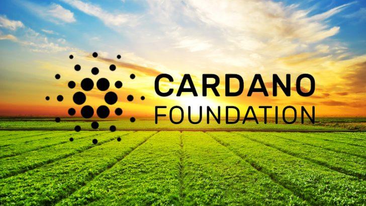 カルダノブロックチェーンが農業を救う|世界で活用される技術とビジョン