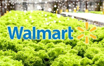 Walmart:ブロックチェーンを食品の衛生管理に活用|レタスの安全性を向上