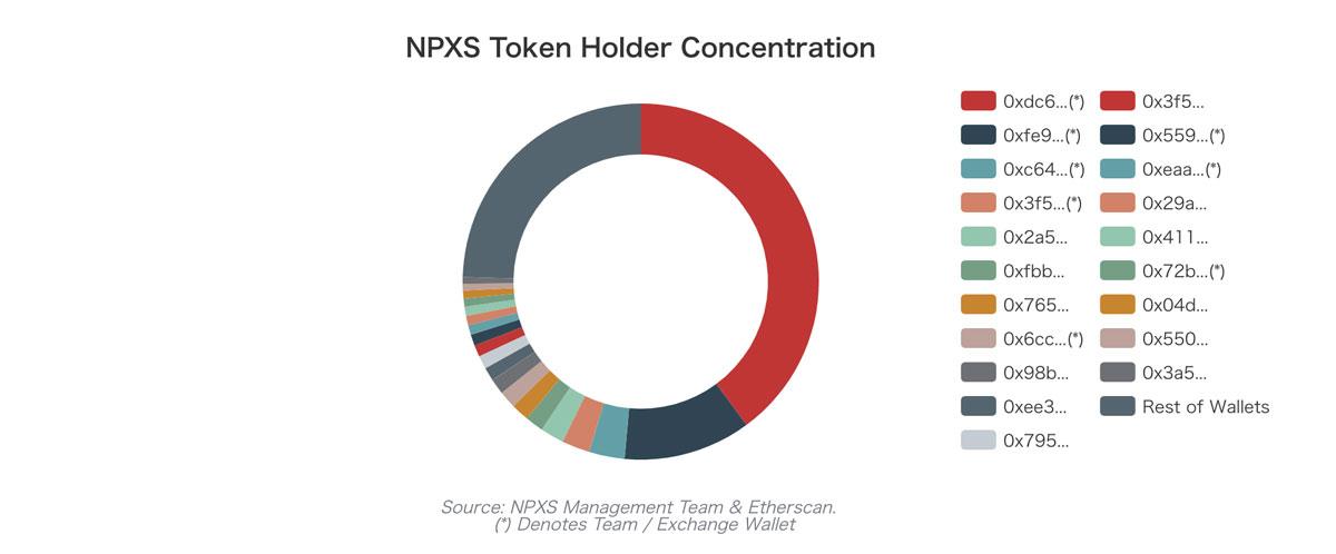 NPXSトークンを保有する上位20個のウォレット(画像:Binance Research)