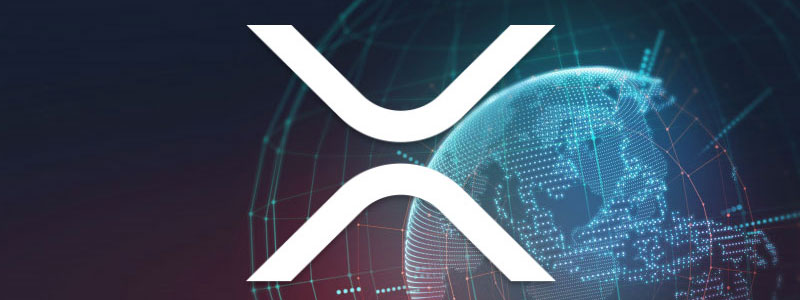 XRP-net-work