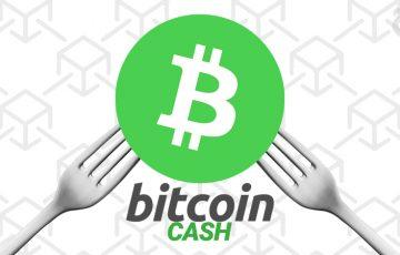 11月15日:ビットコインキャッシュ「ハードフォーク」に対する各仮想通貨取引所の対応