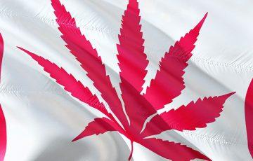 カナダの大麻合法化で「匿名仮想通貨」の使用量が増加する|eToroアナリスト