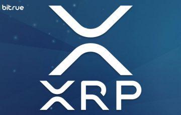 シンガポールの仮想通貨取引所「Bitrue」リップル(XRP)市場に5種類の通貨ペアを追加