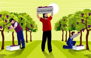 マレーシア・ペナン州:ブロックチェーン活用した「農産物の追跡システム」開発へ