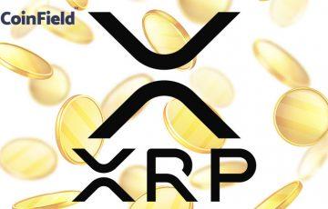 リップル(XRP)基軸の取引所CoinField「130種類以上の通貨ペア」提供へ