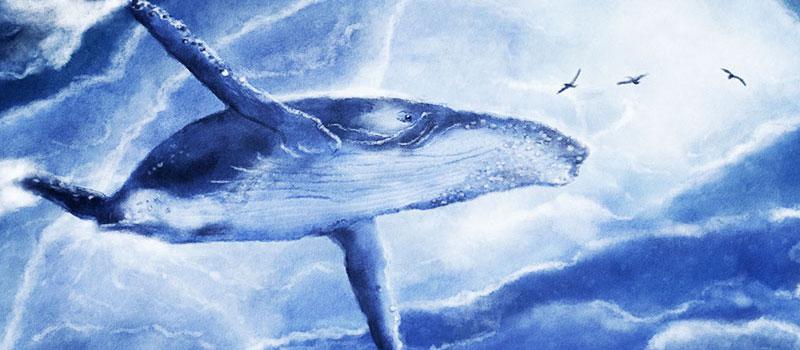 クジラの画像