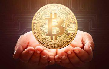ビットコイン投資「長期保有」が成功の鍵?利確ポイントは「98.66%」著名アナリスト