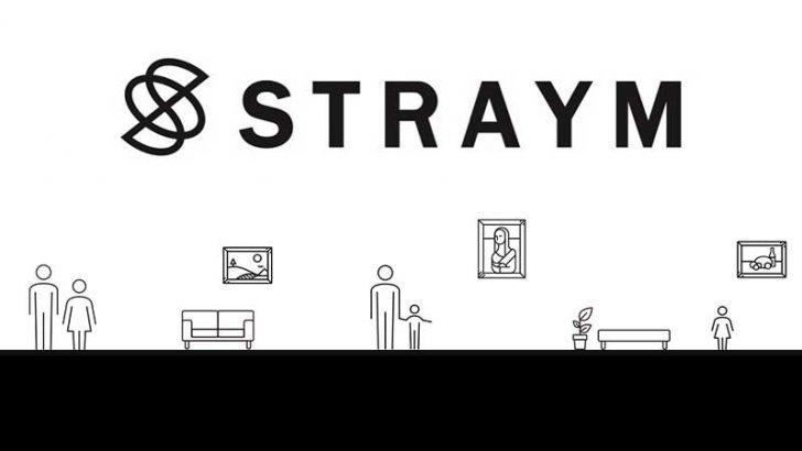 アート作品をブロックチェーンで共同所有「STRAYM」のティザーサイト公開:SMADONA