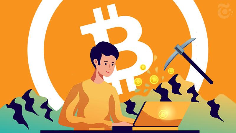 ビットコインキャッシュの「半減期」到来|その後の価格変動は?