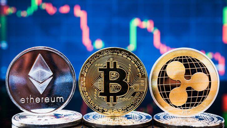 開発者の関わり方が「仮想通貨価格」にも影響か|複数銘柄のリターンに一定の相関性