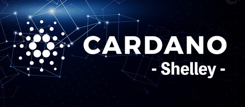 Cardano-Shelley-Roollout-Plan-TOP