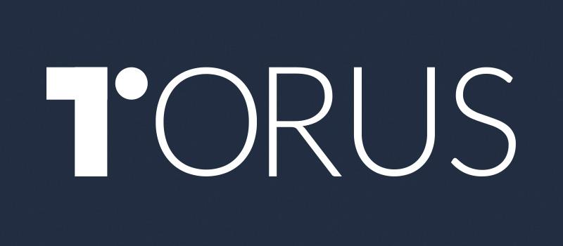 Torus-logo