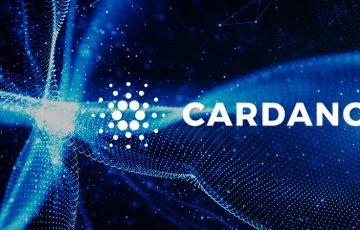 【Cardano/ADA】2020年内に「スマートコントラクト・ネイティブアセット」が登場