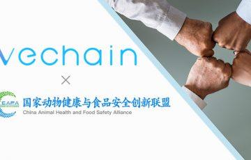 VeChain財団「中国国家動物健康・食品安全創新連盟」に参加|130社以上を技術支援