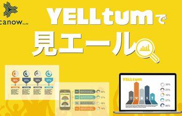 YELLtum:地域通貨活用したデータ分析ツール「見エール」機能実装へ