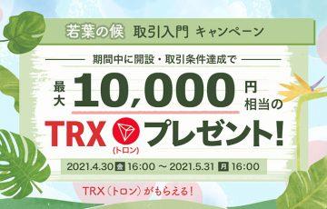 ビットポイント:最大1万円相当のTRXがもらえる「若葉の候 取引入門キャンペーン」開始