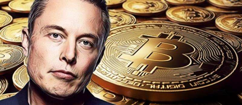 ElonMusk-Bitcoin-BTC