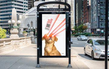 動物保護団体「PAWS Chicago」仮想通貨の寄付を受け入れ|BTC・ETH・DOGEなど
